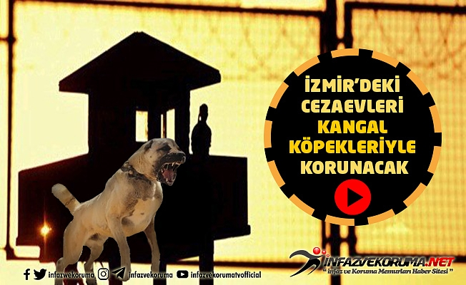 İzmir'deki Cezaevleri Kangal Köpekleriyle Korunacak