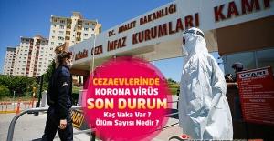 Cezaevlerinde Korona Virüs'de Son Durum - Kaç Vaka Var, Ölüm Sayısı Nedir ?