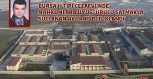 Bursa H Tipi Cezaevi'nde Mahkumlara Uyuşturucu Satmakla Suçlanan Avukat Tutuklandı